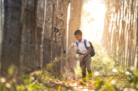 Mi fido di Te: a Montesilvano Pet Therapy per i più piccoli