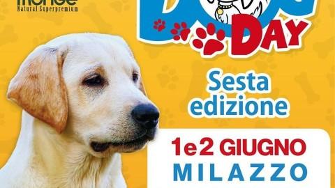MILAZZO, arriva il DOG DAY: giugno inizia scodinzolando