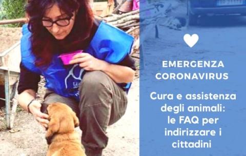 DOMANDE E RISPOSTE: Avere cura degli animali ai tempi del CoronaVirus | LNDC